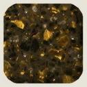 0005_fg196_tempest_gold_leaf